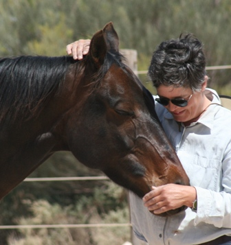 Understand Your Horse. Natural Horsemanship helps problem horses like Kitkat learn to trust their handler